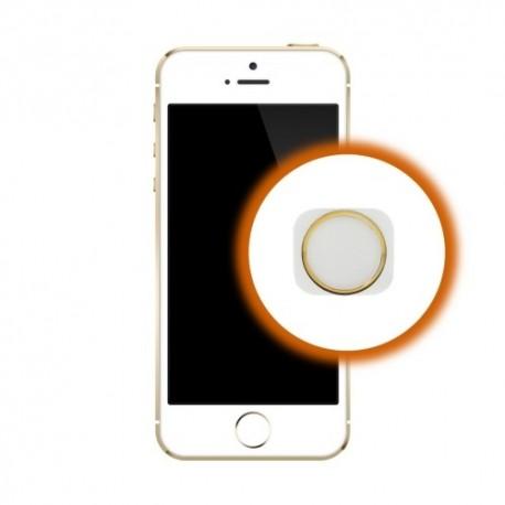 Riparazione Tasto Home iPhone 5S