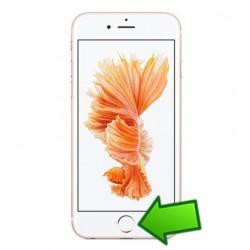Riparazione Tasto Home iPhone 6S