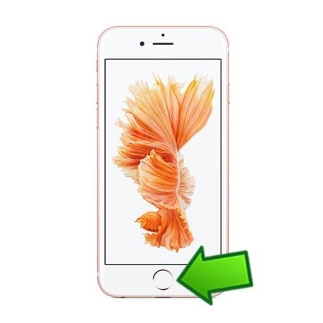 Riparazione Tasto Home iPhone 6G