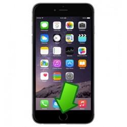 Riparazione Tasto Home iPhone 6S Plus