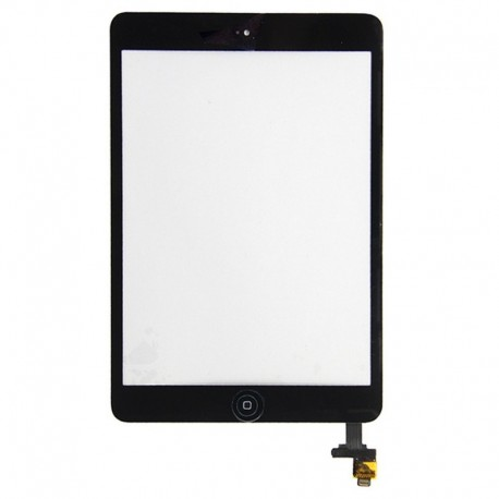 Vetro Digitizer Touch Screen assemblato iPad mini Nero