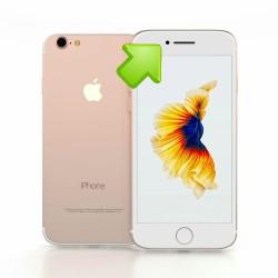 Riparazione Altoparlante Superiore Auricolare iPhone 7
